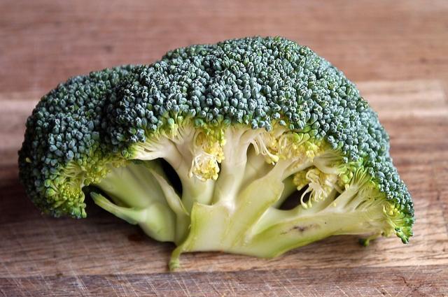 th_broccoli-498600_640