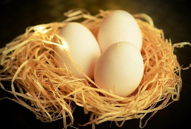 th_egg-1186756_640
