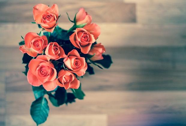 th_roses-690085_640