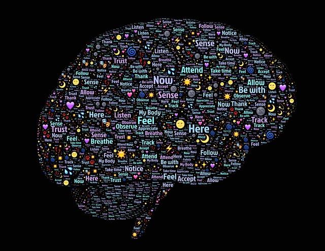 brain-998993_640
